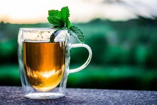 Bí quyết giải độc - thanh nhiệt cơ thể cùng trà nấm linh chi 3
