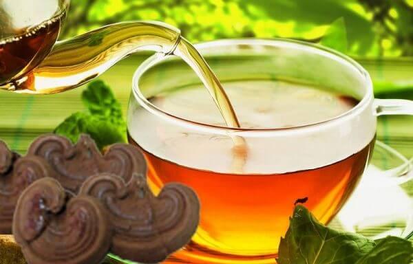 Bí quyết giải độc - thanh nhiệt cơ thể cùng trà nấm linh chi 1