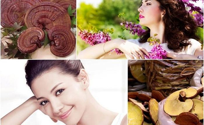5 tác dụng thần kỳ của nấm linh chi đối với phái đẹp 2